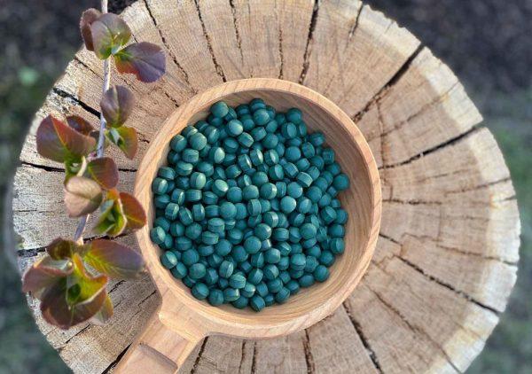 Spirulina - The power of Aztecs